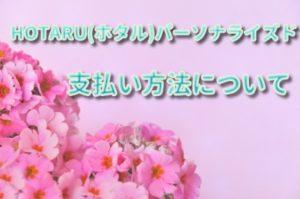HOTARU(ホタル)パーソナライズドの支払い方法